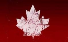 加拿大签证及疑难案例分析讲座 Part II-全国视频直播课