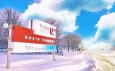 加拿大约克大学-全国视频直播课