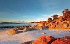 澳大利亚塔斯马尼亚政府中学TAFE— 全国视频直播课